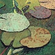 Emerald Pond Art Print