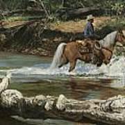 Palomino Crossing Big Creek Art Print
