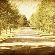 Empty Road Art Print