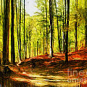 Enchanted Forest - Drawing  Art Print
