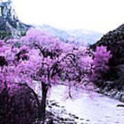 Enchanted Pink Art Print