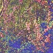Enchanted Wood II Art Print