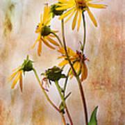 End Of Summer Bouquet Art Print