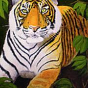 Endangered Bengal Tiger Art Print