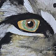Endangered Eye I Art Print