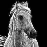 Energetic White Horse Art Print