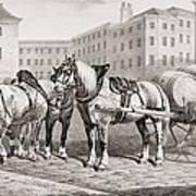 English Farm Horses, 1823 Art Print