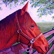 English Horse Art Print by Lorraine Foster