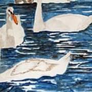 English Swan In The Queen's Garden Art Print
