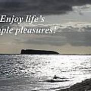 Enjoy Life's Simple Pleasures Art Print
