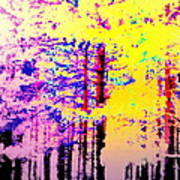 Enlightened Woods Are Here Again Ready To Surprise You  Art Print