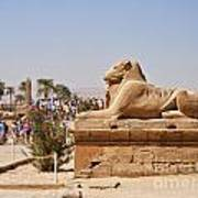 Entrance Sculpture By The Temple Of Karnak Art Print