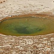 Ephedra Spring In West Thumb Geyser Basin Art Print