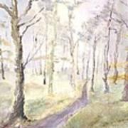Epping Forrest Art Print by David  Hawkins