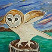 Equinox Owl Art Print