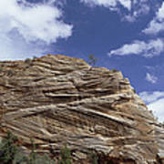 Eroded Sandstone Zion Np Utah Art Print