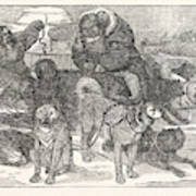 Eskimaux Harnessing Their Dogs To A Sledge Art Print