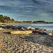 Esquimalt Lagoon - Logs And Beach Art Print