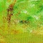 Essay Star Green Art Print