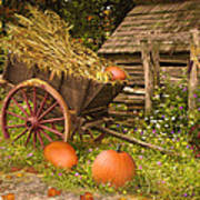 Essence Of Autumn  Art Print by Doug Kreuger