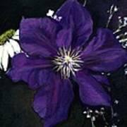 Etoile Violette - Clematis Art Print