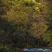 Eume River Galicia Spain Art Print