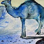 Even Camels Get The Blues Art Print
