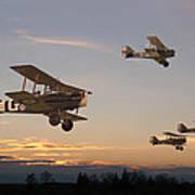 Evening Flight Art Print