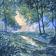 Evening In Wykeham Forest Art Print