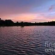 Evening Light Amazon River Art Print