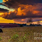 Evening On The Farm Five Art Print