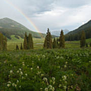 Evening Rainbow In The Rocky Mountains Art Print