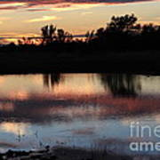 Evening Reflection Art Print