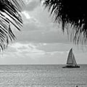 Evening Sail In Paradise Art Print
