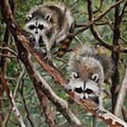 Everglade Babies Art Print