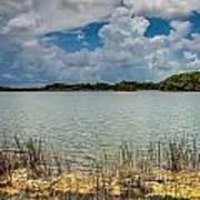 Everglades Lake 6930 Art Print by Rudy Umans