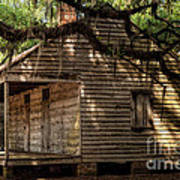 Evergreen Plantation Slave Quarters Art Print