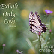 Exhale Only Love Art Print