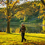 Exploring Autumn Light Art Print by Steve Harrington