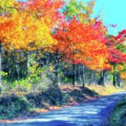 Explosion Of Color - Blue Ridge Mountains I Art Print
