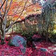 Exquisite Autumn Art Print