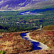 Extasy In Cairngorms National Park Scotland Art Print
