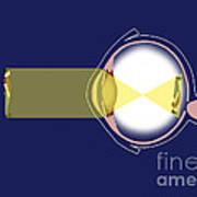 Eye Diagram Art Print