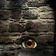 Eye In Brick Wall Art Print