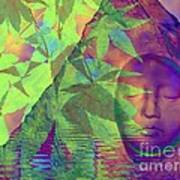 Face In The Rock With Maple Leaves Art Print