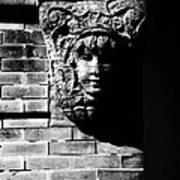 Face Of Stone Art Print