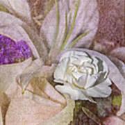 Faded Beauty Art Print