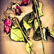 Faded Glory Art Print