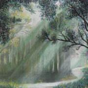 Fairy Glen Art Print