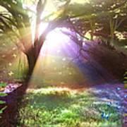 Fairyland Sunset Art Print